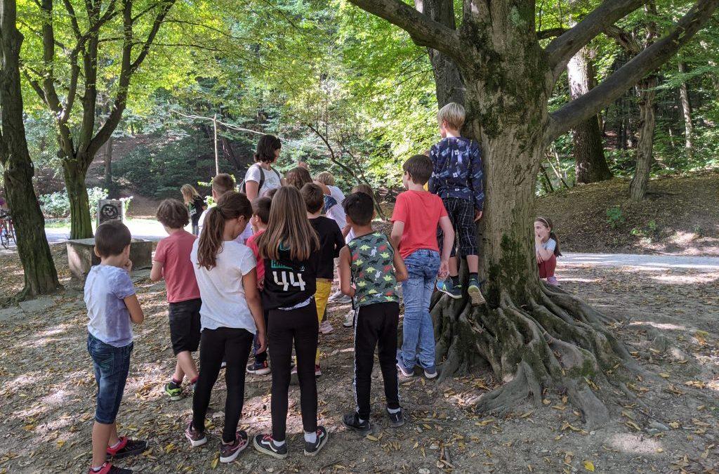 Raziskovanje v gozdu